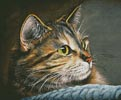Amber Glow - Cross Stitch Chart