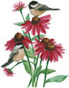 Chickadees on Coneflowers - Cross Stitch Chart