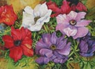 Colourful Anemones - Cross Stitch Chart