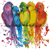 Colourful Birds - Cross Stitch Chart