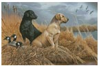Friends in the Field - Cross Stitch Chart