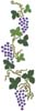 Grapes - Cross Stitch Chart