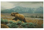 Grizzly - Cross Stitch Chart