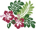 Hibiscus Flowers - Cross Stitch Chart