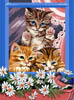 Kittens by the Window - Cross Stitch Chart