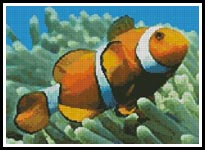 Clownfish - Cross Stitch Chart