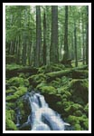 Forest Waterfall - Cross Stitch Chart
