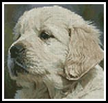 Mini Golden Retriever Puppy - Cross Stitch Chart