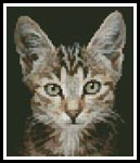Mini Kitten Photo - Cross Stitch Chart