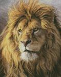 Portrait of a Lion - Cross Stitch Chart