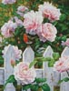 Morning in Provence - Cross Stitch Chart