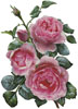 Pretty Pink Roses - Cross Stitch Chart