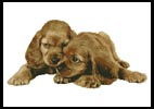 Spaniel Puppies - Cross Stitch Chart