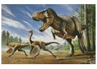 T-Rex attacking Struthiomimus Dinosaurs - Cross Stitch Chart