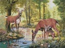 Woodland Stream - Cross Stitch Chart